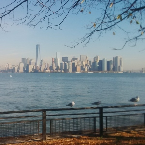 New York Skyline, David Kitz