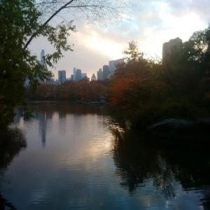 Central Park, NYC -- David Kitz