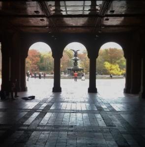 Bethesda, Central Park, NYC -- David Kitz