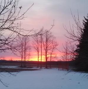 Resurrection Sunrise, Durham, ON --David Kitz