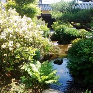 Samarai Garden, Kanazawa, Japan, -- David Kitz