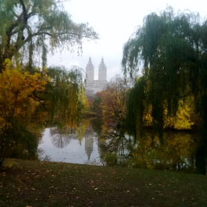 Central Park, New York, NY - David Kitz