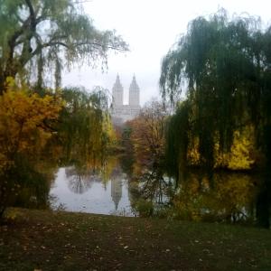Central Park, New York, NY - David Kitz