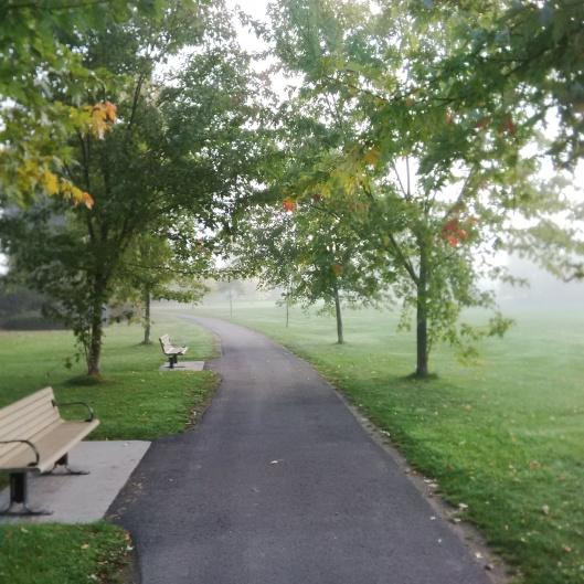 Fog Path 2014-10-12