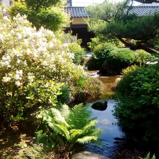 Samurai Garden 1 2015-05-22