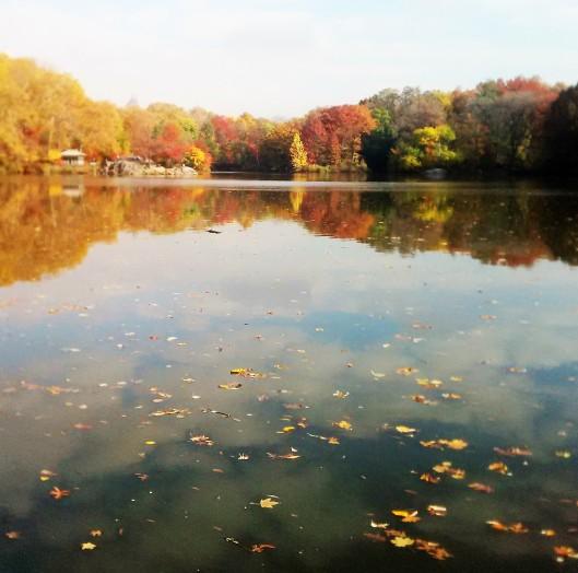 Lake 2 2014-11-11