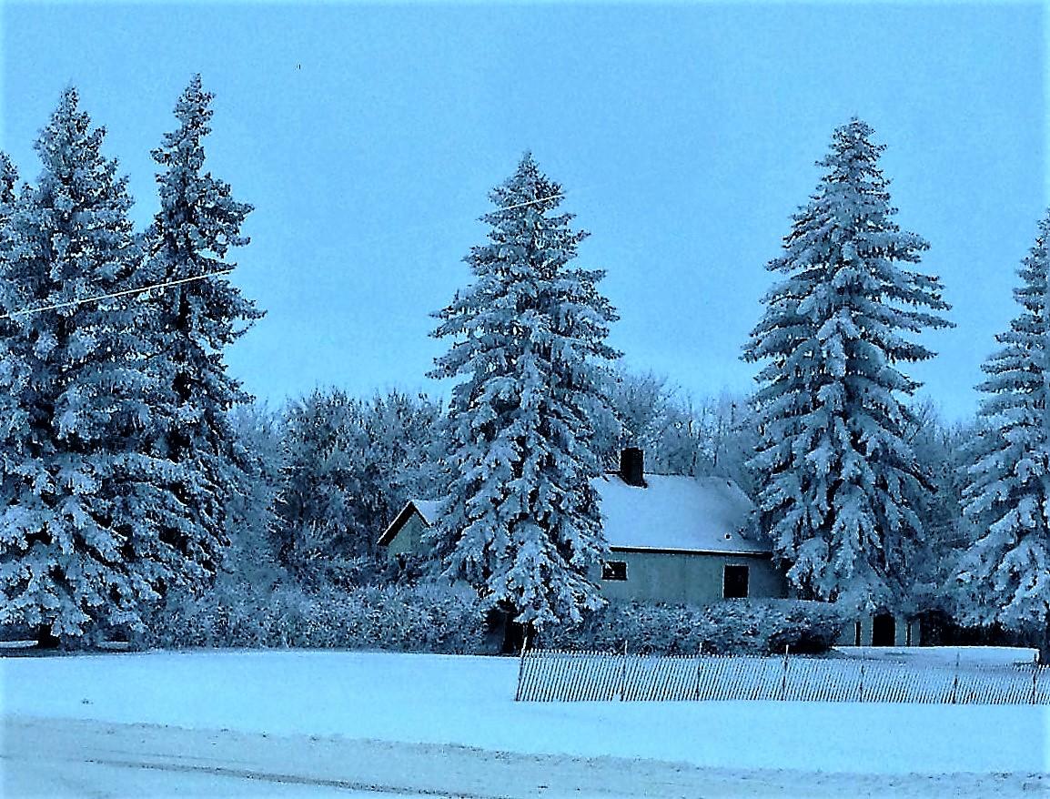 d-adam-winter-farm
