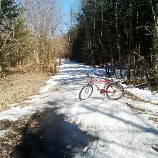 Ice bike trail
