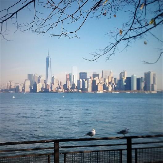 Liberty Skyline 2014-11-10 (2)