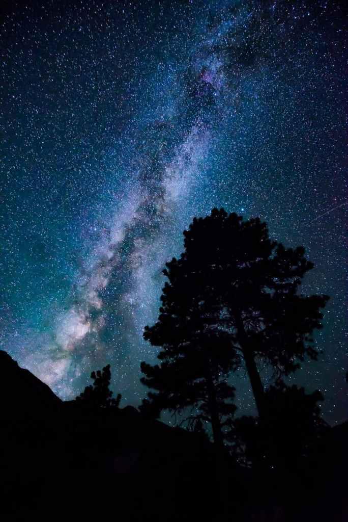 low angle photograph of stars