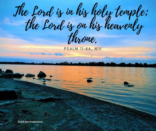 Psalm 11-4