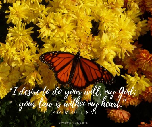 Psalm 40-8