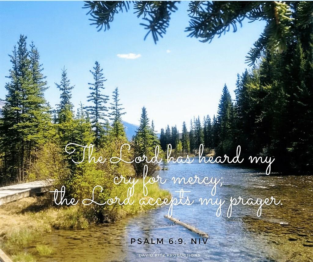 Psalm 6-9 (2)