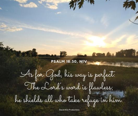 Psalm 18-30
