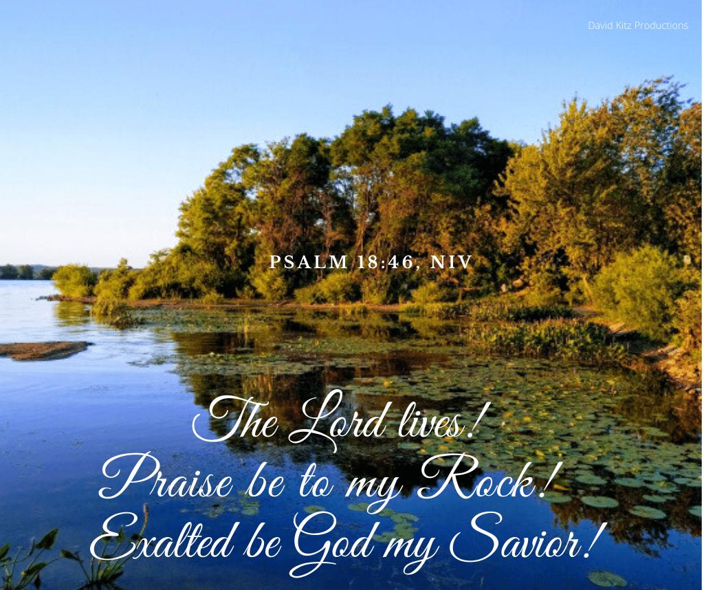 Psalm 18-46