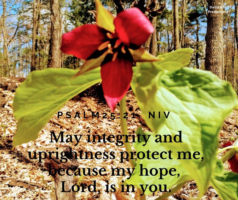 Psalm 27-21