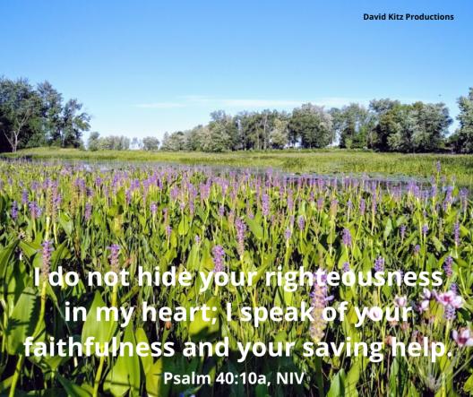 Psalm 40_10a