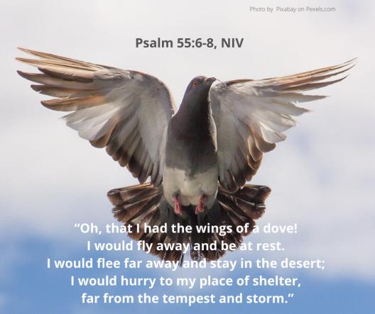 Psalm 55_6-8
