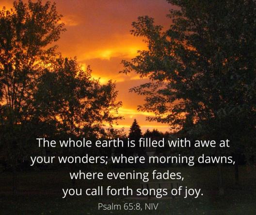 Psalm 65_8