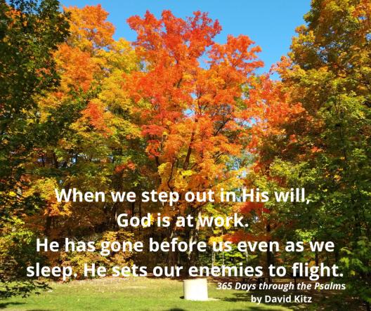 365 Psalm 68b
