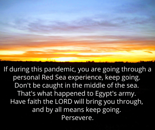 365 Persevere Psalm 77
