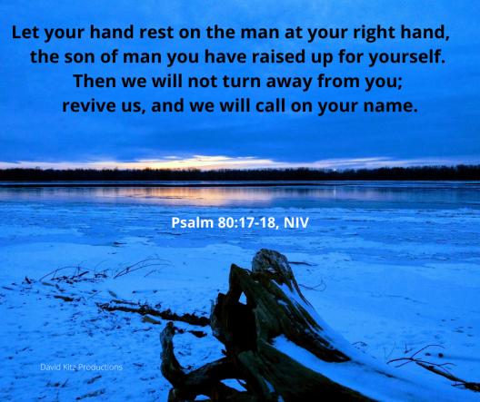 Psalm 80_17-18
