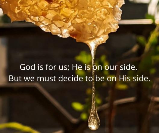 Psalm 81_10-16