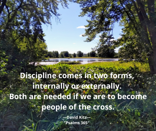 365 Discipline Comes