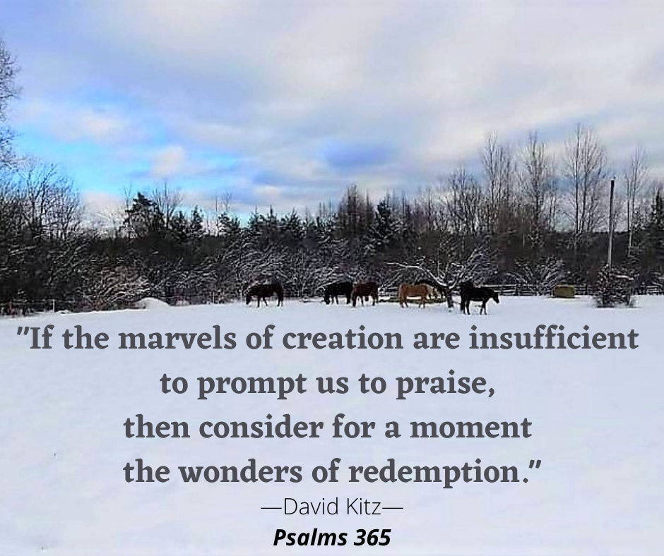 If the marvels of creation are insufficient 365