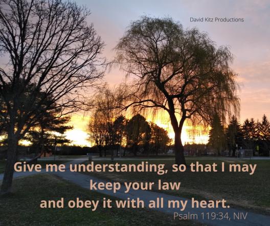 Psalm 119_34