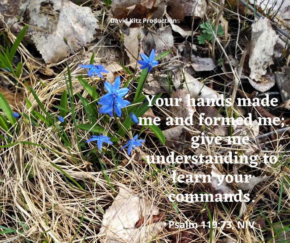 Psalm 119_73