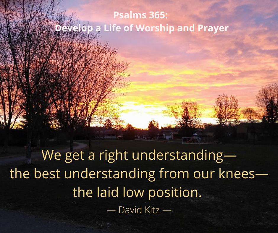 Psalms 365 Laid Low