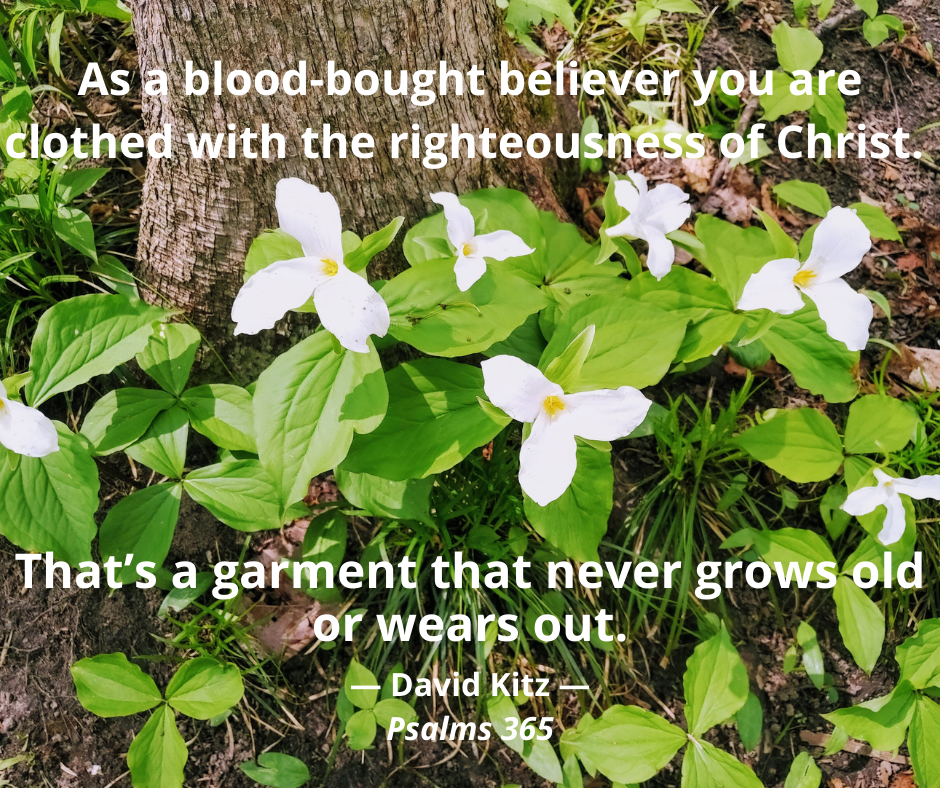 365 clothed with Christ 132b