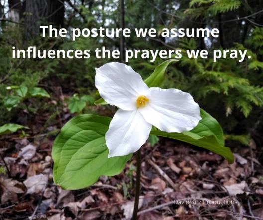 Prayer Posture Psalms 365