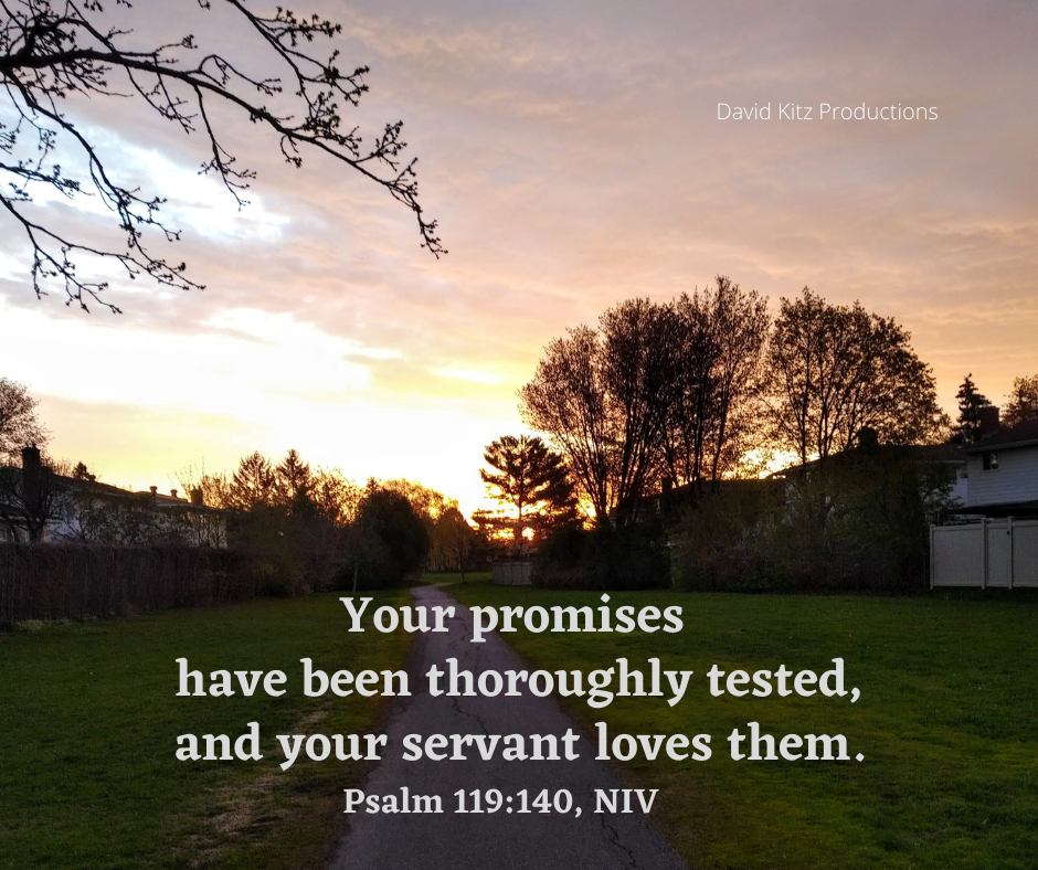Psalm 119_140