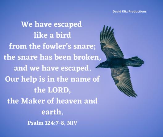 Psalm 124_7,8
