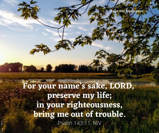Psalm 143_11