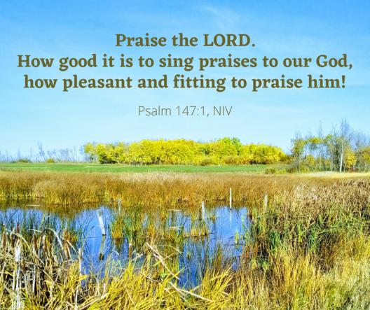 Psalm 147_1