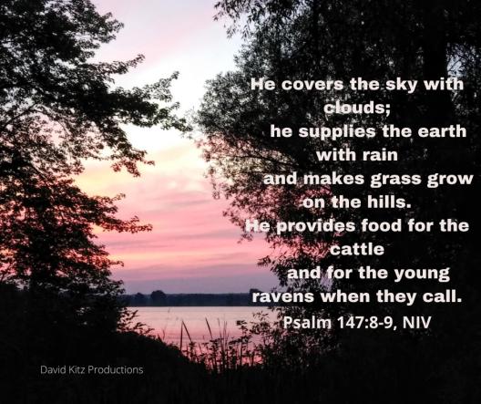 Psalm 147_8-9