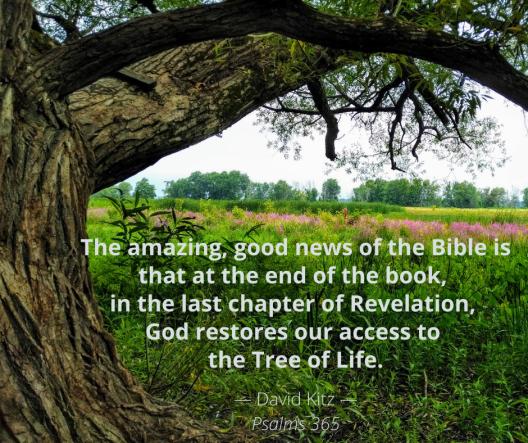 Psalm 1 Tree of Life