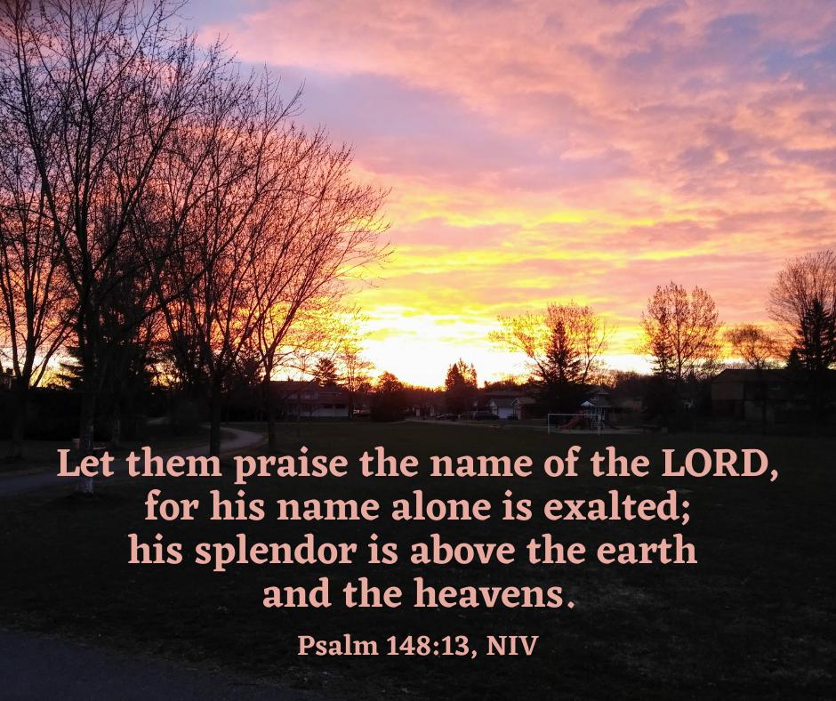 Psalm 14813
