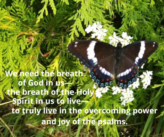 Psalm 150 the breath of God in us—