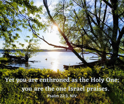Psalm 22_3