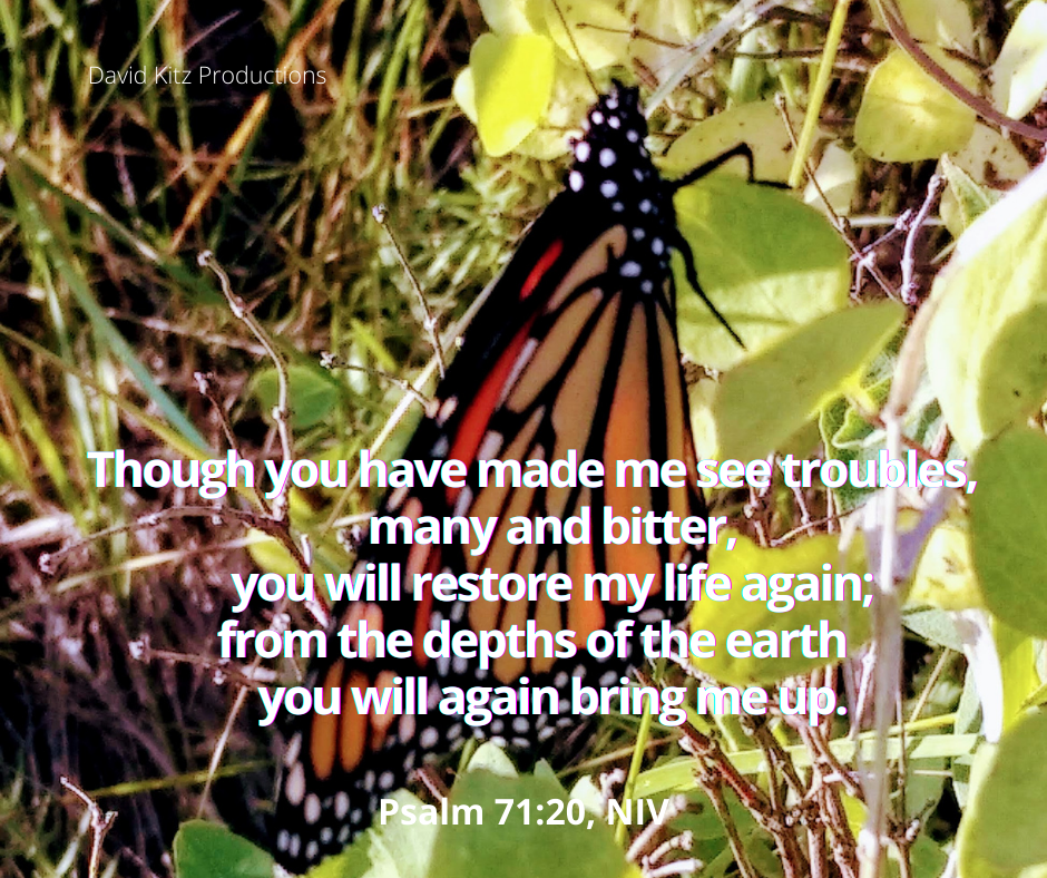 Psalm 71_20a