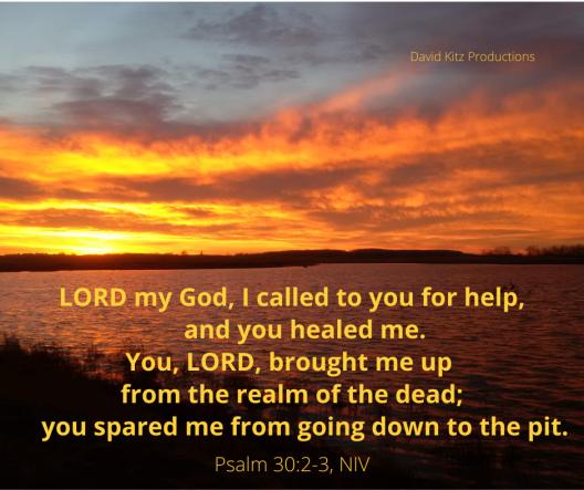 Psalm 30_2-3